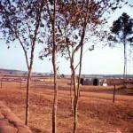 Gun shack and flight line