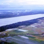 Mekong Farmland